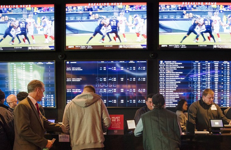 About sports betting dog track betting tips